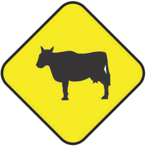 Cattle Corssing traffic sign